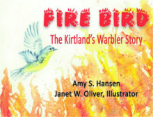 Tweet to tell us that you read FIRE BIRD by Amy S. Hansen
