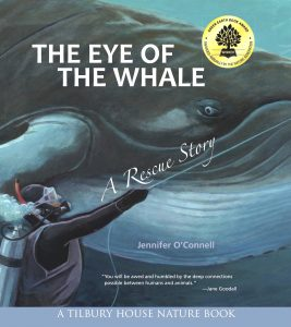 THE EYE OF THE WHALE by Jennifer O'Connell
