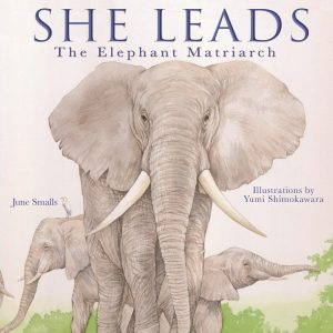 SHE LEADS by June Smalls